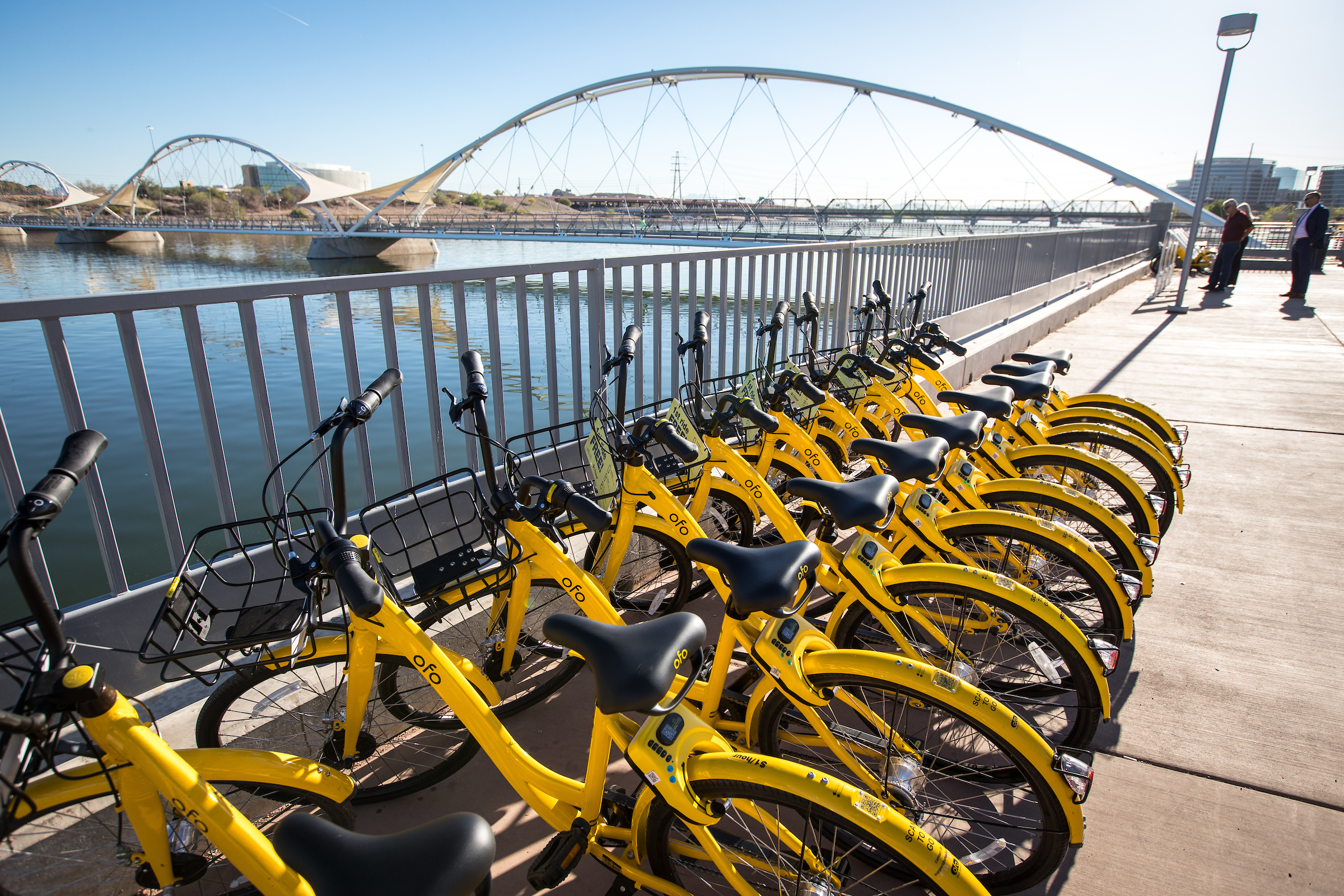 A row of yellow bikes in front of Tempe Town Lake