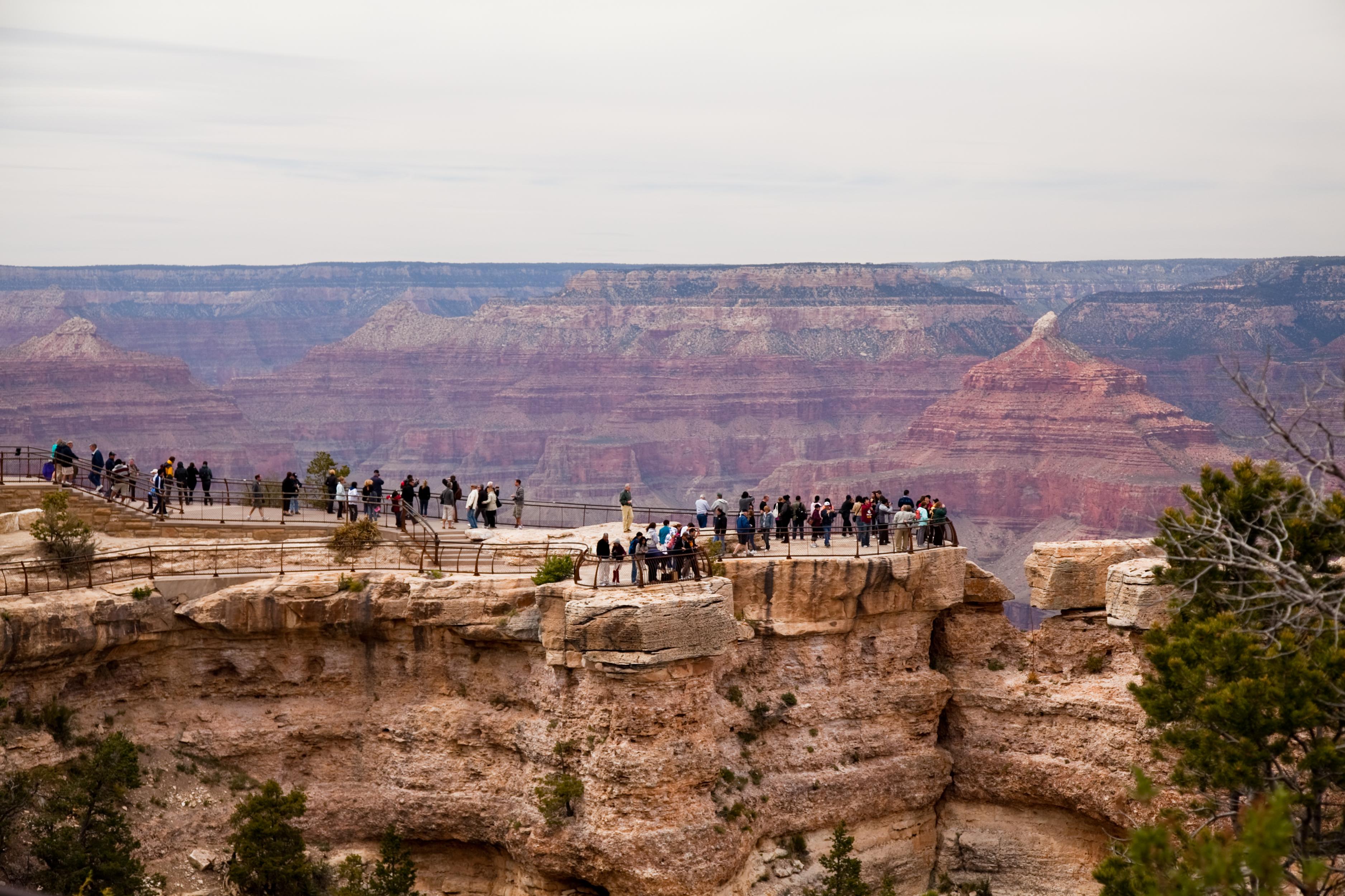 Canyon Tourists