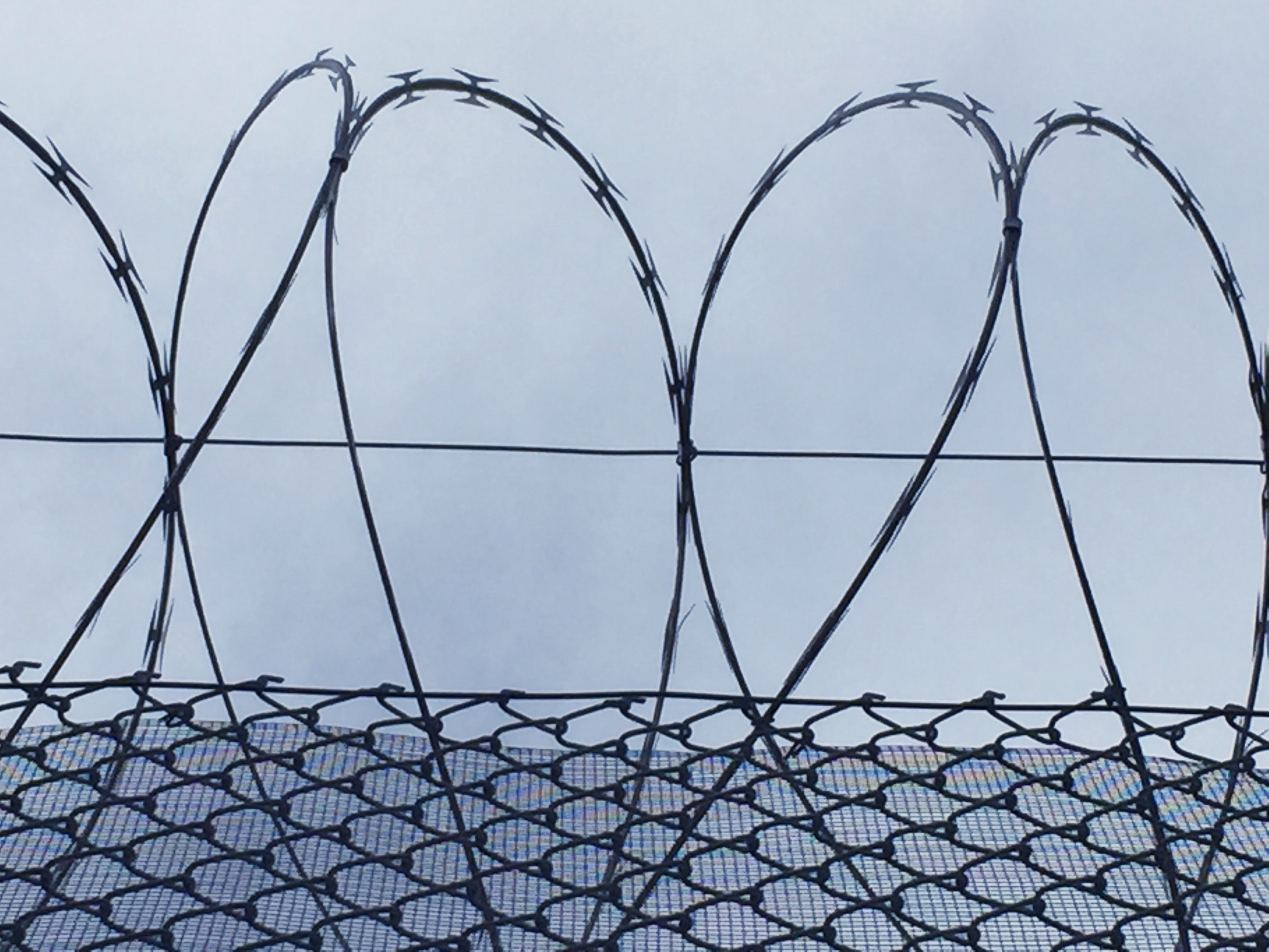 Razor wire heart / Photo by Corri Wells