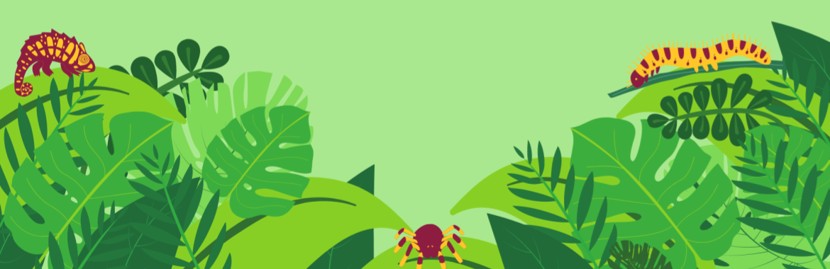 Green rainforest with maroon and orange jungle creatures