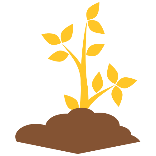 gold-growing-plant