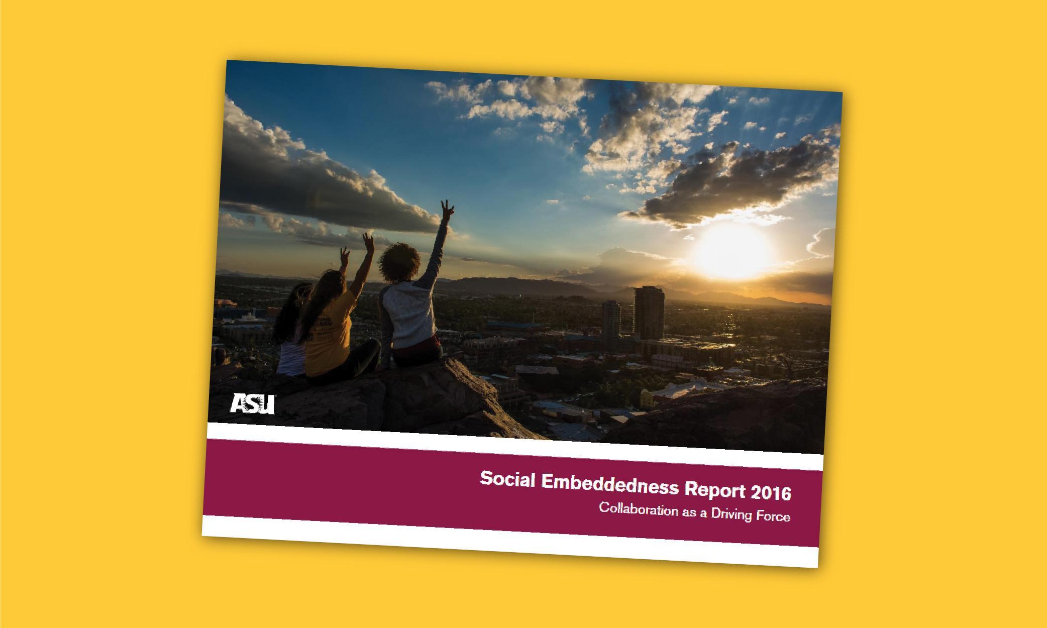 2016 Social Embeddedness Report