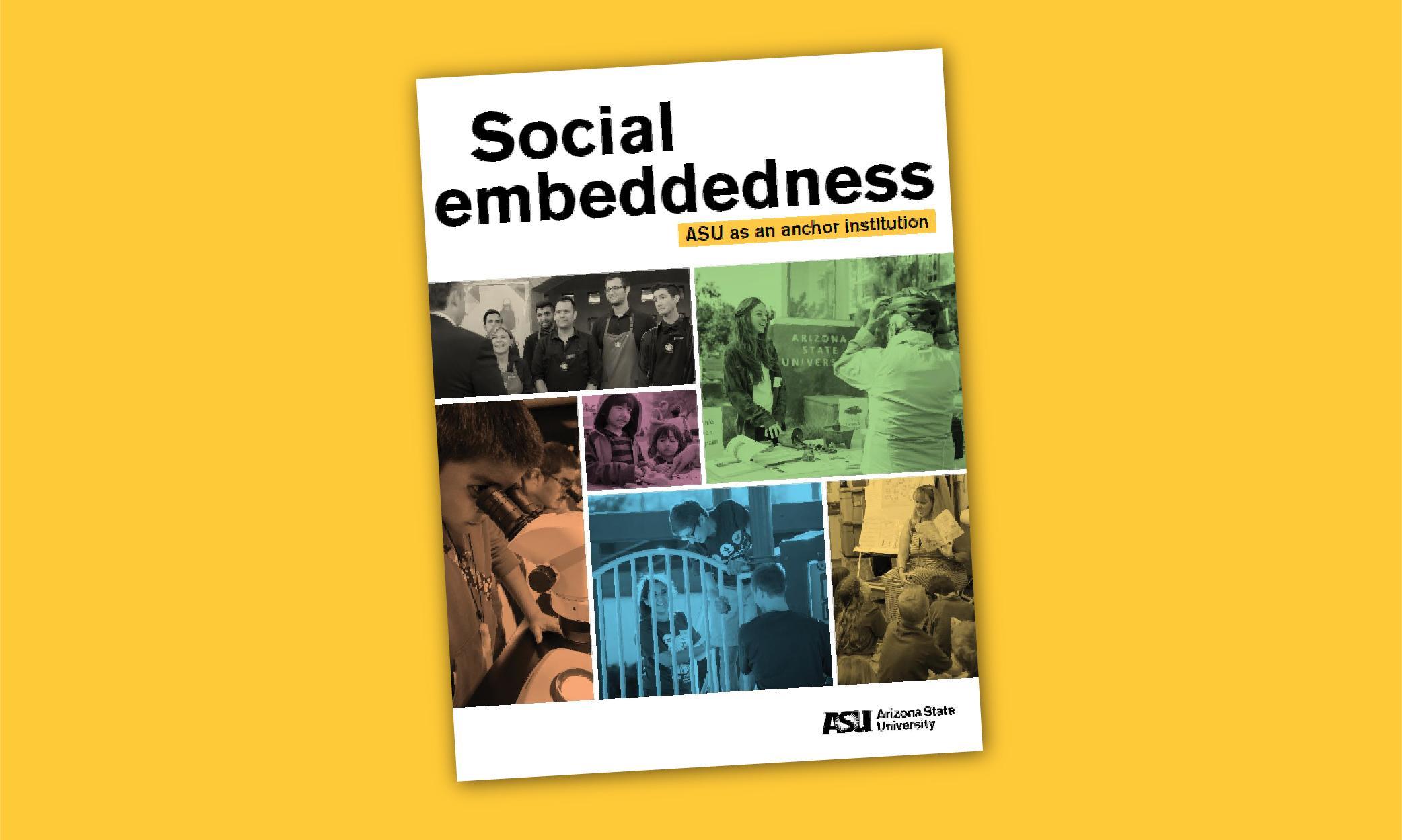 2017 Social Embeddedness Report