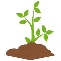 green-growing-plant