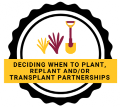 Deciding when to plant, replant and/or transplant partnerships logo