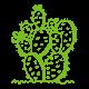 green-cactus